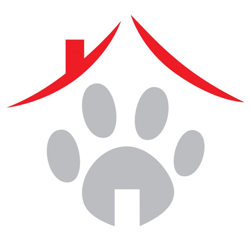 scuola cnai como, scuola cani varese, scuola cani monza e brianzaeducazione cani como monza e brianza